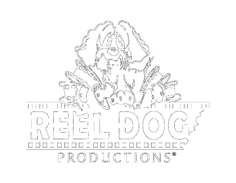 Reel,Dog,Productions
