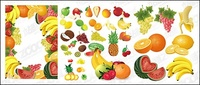 fruit,event,vector,material