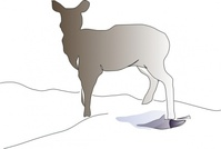 deer,animal,line art,nature,mammal,media,clip art,public domain,image,png,svg