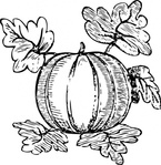 melon,food,plant,vegetable,squash,gourd,fruit,media,clip art,externalsource,public domain,image,png,svg