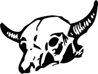 skull,cow,cattle,western