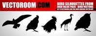 bird,animal,_animals,nature,chicken,cock,crane,fly,silhouette,wild,wing