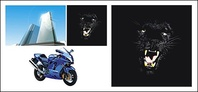 tall,building,panther,motorcycle,material