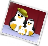 happy,penguin,family,photo,clip