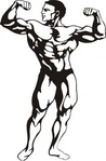 body,builder,man,media,clip art,public domain,image,png,svg