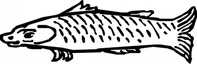 fish,media,clip art,public domain,image,svg,animal