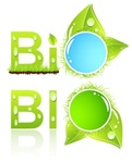 label,alternative,banner,bio,biological,botanical,circle,conservation,drop,ecology,element,environment,environmental,fresh,fuel,green,healthy,herbal,icon,leaf,natural,nature,object,plant,symbol,tag,water