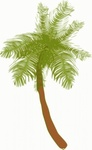 coconut,tree,cartoon,line art,nature,plant,colouring book,media,clip art,png,svg,public domain,image
