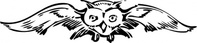 front,view,media,clip art,externalsource,public domain,image,png,svg,animal,owl,bird,face,flying,loc