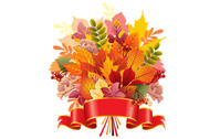 autumn,leaf,various,composition,bouquet,bunch,group