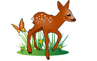 nature,animal,deer,butterfly