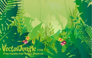 Free Download Of Jungle Vector Graphics And Illustrations