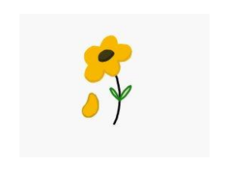 yellow flower,flower,nature,daisy,cartoon flower,plant