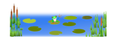 frog,pond,swamp,water,lily pad,cattail,frog,cattail