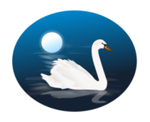 swan,cygnus,mute swan,bird,nature,scenery,water,swim,animal,white,blue,moon,night,elegant,ripple,swans,cygnus