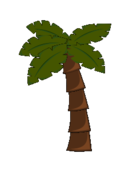 palm tree,jungle,coconut tree,palm,jungle leaf,palm tree,jungle,coconut tree,palm,jungle leaf