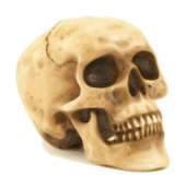 skull,icon,death,rip,grave,ghost,halloween,photo realistic,traced,kill,human,underground,skull,inky2010,inkscape,clip art,halloween2010