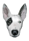highres,bullterrier head,bujung,bull terrier cartoon,dog bullterrier