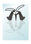 bug,insect,cartoon,mosquito