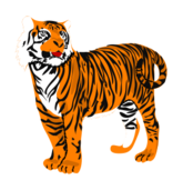animal,mammal,tiger