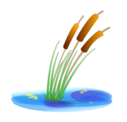 water,reed,lake,nature,plant,media,clip art,public domain,image,png,svg