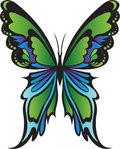 butterfly,green,insect,novi candrasari,green butterfly