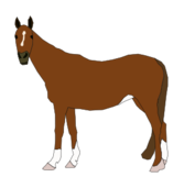 media,clip art,public domain,image,png,svg,cartoon,animal,horse,brown,standing